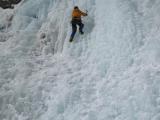 alp2009   002
