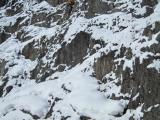 alp2009   008