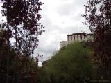 lhasa_10