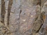 petroglifs_02