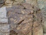 petroglifs_04