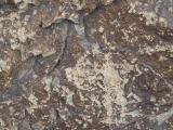 petroglifs_10