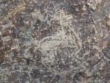 petroglifs_12