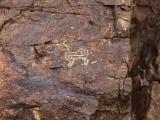 petroglifs_15