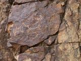 petroglifs_20