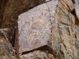 petroglifs_21
