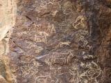 petroglifs_22