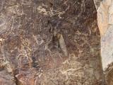 petroglifs_24