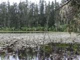 holy_lake_near_lunang_023