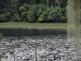 holy_lake_near_lunang_027