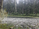holy_lake_near_lunang_028
