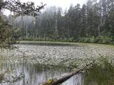 holy_lake_near_lunang_029