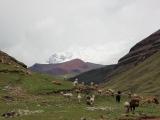 Перу 2013. Аусангате