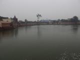 Индия 2013. Вриндаван