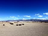 Кайлас 2011. На плато Барка