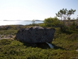 Остров Большой Дарьин