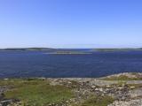 Остров Песья Луда