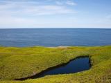 Остров Северная Тупичиха